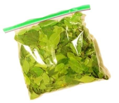 Drumstick Leaves - 1 bunch (0.4 lb approximate)