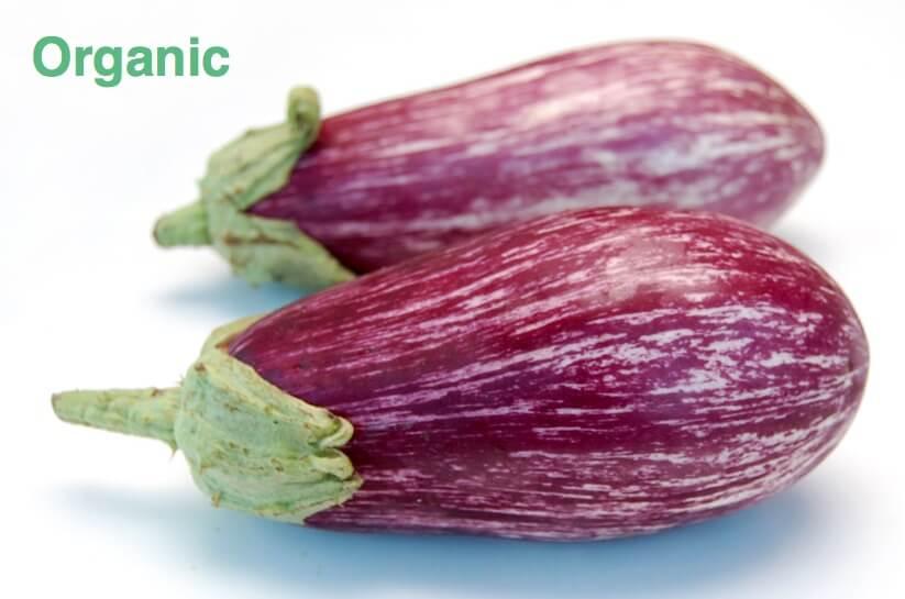Graffiti eggplant  - 1 lb