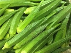 Indian Okra - 1 lb