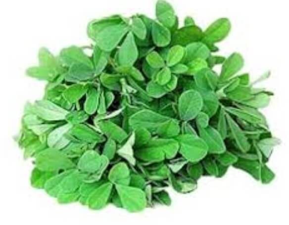 Fenu Greek/Methi Leaves - 1 Bunch