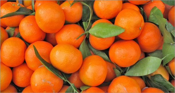 Honey Sweet Mandarins Clementines - 3 lb