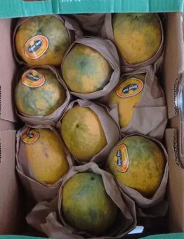 Ripe Papaya - 1 Count (2 lb approximate)