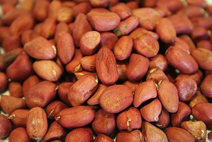 Raw Peanuts - 4 lb