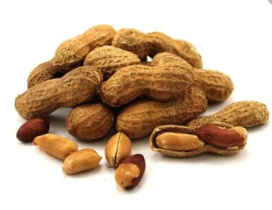 Dry Roasted Peanuts In shell Premium Jumbo - 1 lb