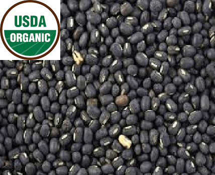 ORGANIC Sanjeevani urad whole (Black) - 2 lb